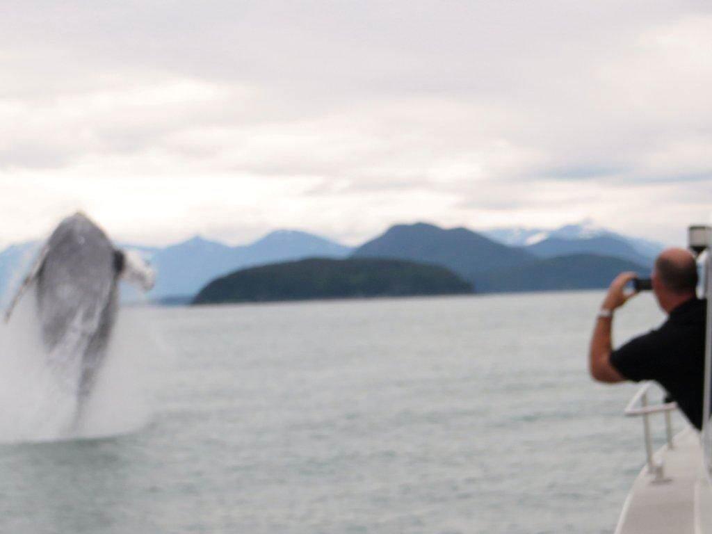 Alaska 2012 314