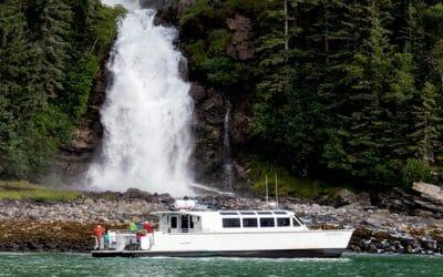 WWW.  Waterfalls, Whales, Wildlife……Wonderful